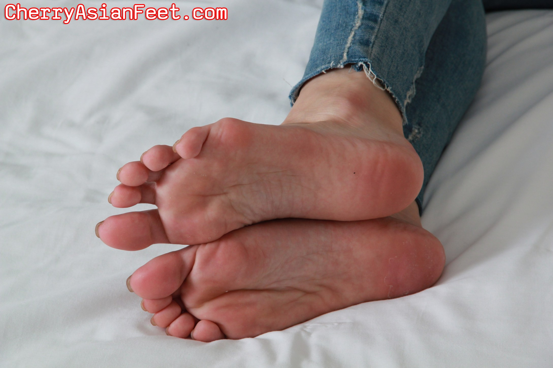 domination female foot links